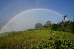 Regenbogen am Victoria Wasserfall